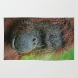 Female Orangutan Rug