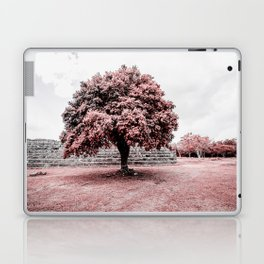 Dzibilchaltun Tree Laptop & iPad Skin