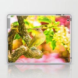 Painted House Wren Laptop & iPad Skin