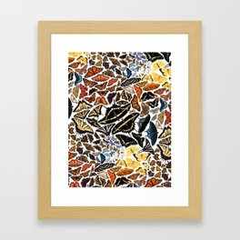Butterflies of North America Pattern Framed Art Print