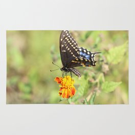 Black Swallowtail Butterfly Rug