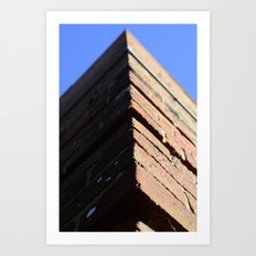 Brickwork Art Print