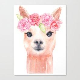 Sweet Alpaca Canvas Print