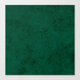 Green suede Canvas Print