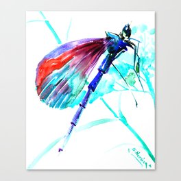 Dragonfly , Turquoise Bright Blue Red art Canvas Print