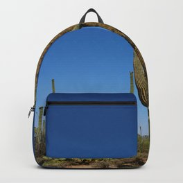 In The Sonoran Desert Backpack