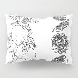 Citrus Branch of Lemons and Slices of Fruit Pillow Sham