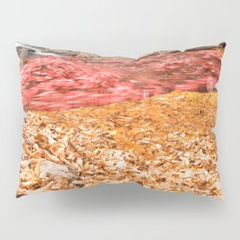 With Love From Maryland Pillow Sham