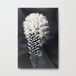 B&W Floral Metal Print
