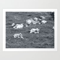 cows Art Prints featuring Cows by Mr and Mrs Quirynen