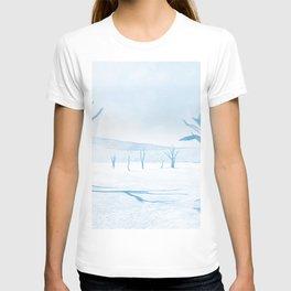 deadvlei desert trees acrwb T-shirt