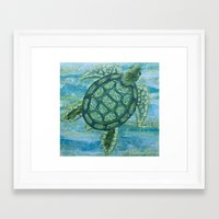 sea turtle Framed Art Prints featuring turtle by Brittany Rae