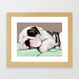 Sleeping Puppy Framed Art Print