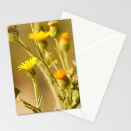 Yellows&Oranges Stationery Cards