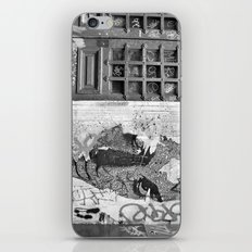 Paris, somewhere on a wall iPhone & iPod Skin