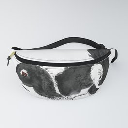 Squirrel Fanny Pack