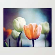Orange Tulip Navy Blue Flower Photography, Coral Peach Floral Nature Canvas Print