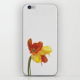 Tulip Still Life iPhone Skin
