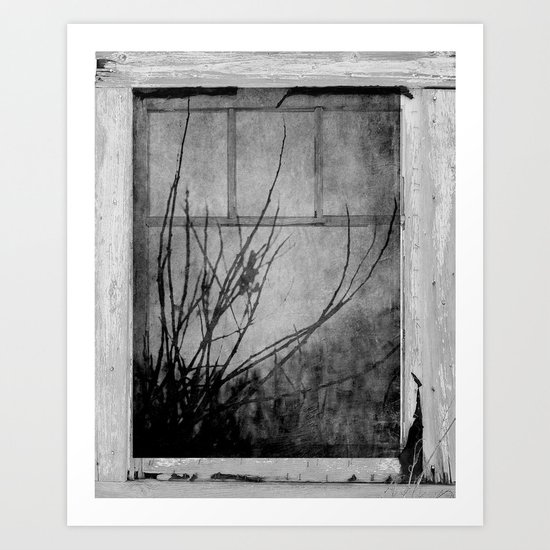 Branches At The Window  Art Print