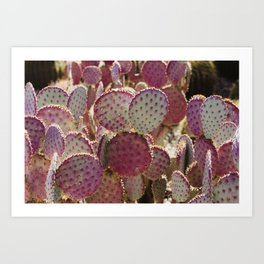 Purple Cactus Art Print