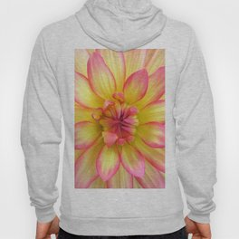 Pink and Yellow Dahlia Flower / Nature Macro Photography Hoody