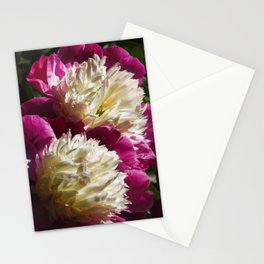 Peonies Reaching for the Sun Stationery Cards