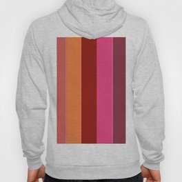 Modern girly pink fashion color block stripes Hoody