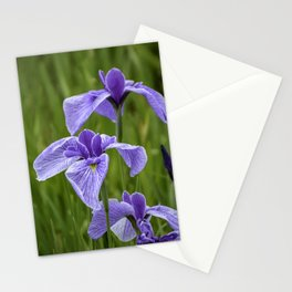 Sankeien Garden Iris Stationery Cards