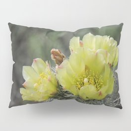 California Cactus Blooms Pillow Sham
