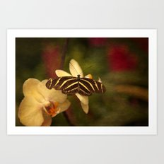 Natures Flutter Art Print