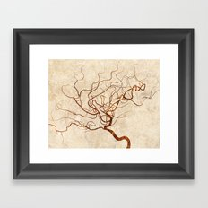 Cerebral in White Framed Art Print