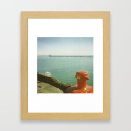 35 Framed Art Print