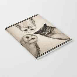 The Owl's 3 Notebook