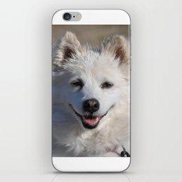 American Eskimo iPhone Skin