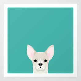 Chihuahua dog head pet art dog breed chihuahuas peeking Art Print