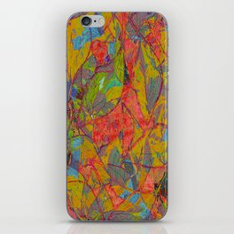 Decomposition 1 iPhone Skin