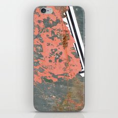 New Beginnings! iPhone & iPod Skin