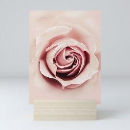 Milky Pink Rose Mini Art Print