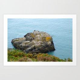 Sea and stone  Art Print