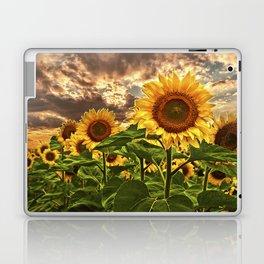 Sunflowers at Sunset Laptop & iPad Skin