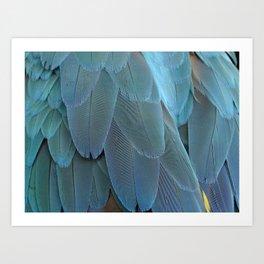 Blue feather Art Print