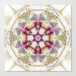 Mandalas from the Heart of Change 7 Canvas Print