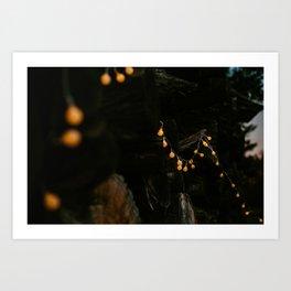 CHRSITMAS LIGHTS Art Print