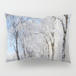Winter-avenue Pillow Sham