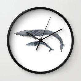 Fin whale Wall Clock