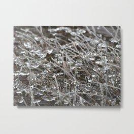 Jeweled River Grass Metal Print