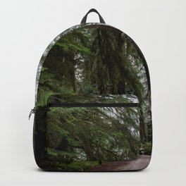 Redwood Forest Adventure III - Nature Photography Backpack