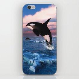 Killer whales in the Arctic Ocean iPhone Skin