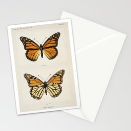 Monarch Butterfly | Monarch Butterflies | Moths and Butterflies of the United States | Vintage Butterflies |  Stationery Cards