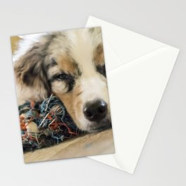 Joke of the Day Stationery Cards